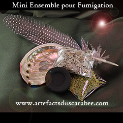B- Mini Ensemble pour Fumigation & Purification Chamanique